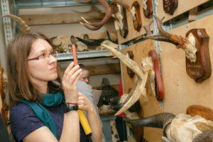 XX Научно-практический семинар по повышению квалификации сотрудников естественно - исторических музеев